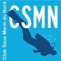 Logo-CSMN-2013-200
